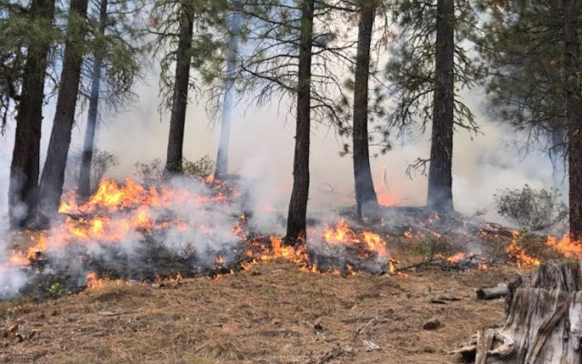 Forest fires spread along Clackamas and Klamath County